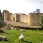 Château de Brie-Comte-Robert - Façade nord-est et porte Saint-Jean -- © ADVC Brie