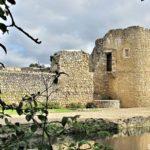 Château de Brie-Comte-Robert - Tour est et vestiges de latrines -- © ADVC Brie
